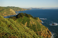 California, Marin County, Muir Beach coastline