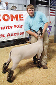 Fair Premium Auction 2015