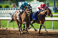ARCADIA, CA - APRIL 08: Gormley #8, ridden by Victor Espinoza defeats Battle of Midway #3 with Corey Nakatani to win the Santa Anita Derby at Santa Anita Park on April 08, 2017 in Arcadia, California.  (Photo by Zoe Metz/Eclipse Sportswire/Getty Images)