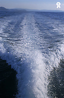 Water trail behind speedboat at sea (Licence this image exclusively with Getty: http://www.gettyimages.com/detail/sb10068805ab-001 )