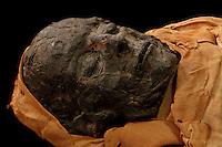 Tissue Sampling Operation Egyptian Mummy (March 09)
