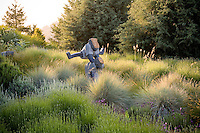 Art, sculpture of children playing leapfrog in California meadow garden