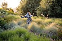 Art, sculpture of children playing leapfrog in California meadow garden