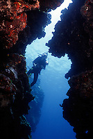 MARINE LIFE: REEFS, CAVERNS &amp; DIVERS<br /> Diver from within a cavern<br /> Diver with underwater camera equipment near coral reef.