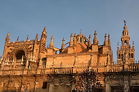 Low angle view showing the Sacristia Mayor dome, Seville Cathedral, Andalucia, Spain, pictured on December 26, 2006 in the winter morning light. Seville Cathdral is the largest Gothic building in the world. It was converted from the original 12th century Almohad Mosque on this site during the 16th century and the original Moorish entrance court and Giralda Minaret are both integrated in the cathedral. Inside is the tomb of the explorer Christopher Columbus (1451-1506). The Sacristia Mayor dome was rebuilt after an earthequake in 1888. Picture by Manuel Cohen
