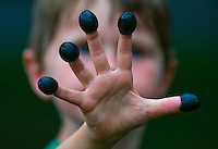 Young boy, 5-9, shows off the black olives he's stuck on his fingers before eating them.