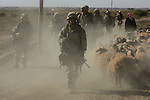 Marines from Lima Co. 3rd Battalion 6th Marines sweep through the countryside north of Husaybah and Karabilah as they move into their attacks positions for the final push to clear the last parts of the two cities as part of Operation Steel Curtain on Fri. Nov. 11, 2005.