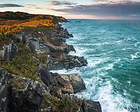 Sunrise on wild and remote coastline near Charleston near Westport, West Coast, New Zealand