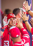 5 March 2016: Washington Nationals infielder Matt Skole returns to the dugout after hitting a 2-run homer in the 8th inning of a Spring Training pre-season game against the Detroit Tigers at Space Coast Stadium in Viera, Florida. The Nationals defeated the Tigers 8-4 in Grapefruit League play. Mandatory Credit: Ed Wolfstein Photo *** RAW (NEF) Image File Available ***