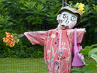 Scare crow in childrens garden, Yarmouth community garden, Yarmouth Maine, USA