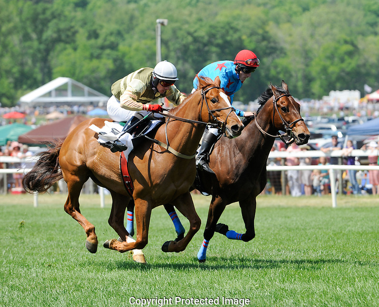 Atlanta Steeplechase 2012