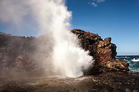 The geyser-like Nakalele blowhole at Nakalele Point on the rugged north shore of Maui.