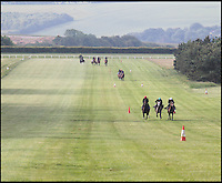BNPS.co.uk (01202 558833)<br /> Pic: StruttParker/BNPS<br /> <br /> ***Please Use Full Byline***<br /> <br /> Gallops where 50 Classic winners have been trained.<br /> <br /> Kings ransom required to buy one of the most famous Racing estates of the Sport of Kings.<br /> <br /> One of Britain's finest country estates which comes with its own world-class horse racing stables has gone on the market for a whopping &pound;26 million.<br /> <br /> The 2,000-acre Manton estate boasts a 200-year-old manor house, 24 cottages, 10 flats and two hostels, all set in sprawling, quintessentially English countryside.<br /> <br /> But its most impressive feature is its state-of-the-art 400-acre race horse training centre made up of five separate yards with a total of 220 horse boxes and seven gallops.<br /> <br /> The stables have been so successful that they have produced 50 Classics winners over their 150 year history, 10 of which have been under the stewardship of current owners the Sangster family.