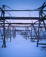 Empty wooden stockfish racks used from drying cod during winter, Flakstadøy, Lofoten Islands, Norway
