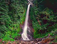 Gitgit Waterfall, Bali's Highest at 149 feet, Rainforest on Bali's North Coast.Island of Bali, Indonesia