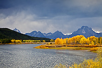 Fall colors, Grand Tetons, clearing storm, and Oxbow Bend in Autumn, Jackson Hole, Wyoming