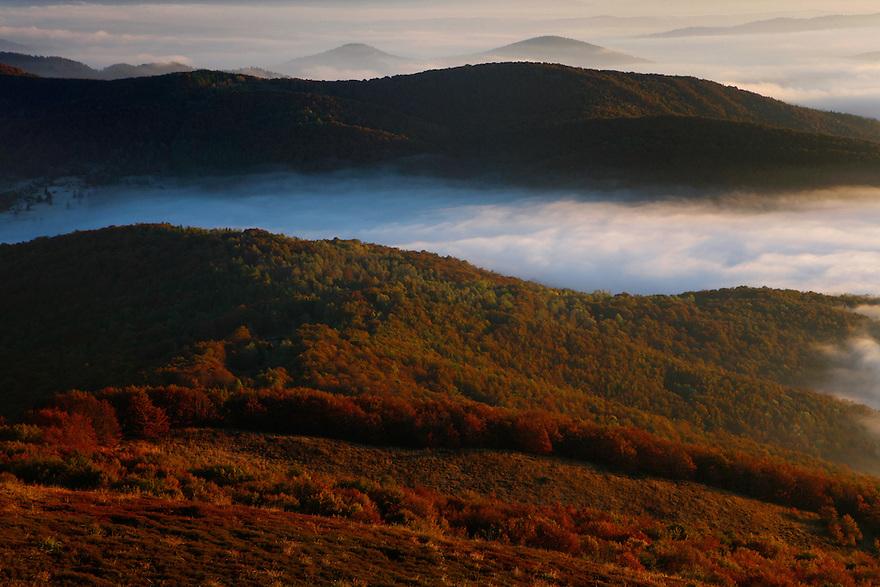 Magura Stuposianska Peak in clouds, view from Polonina Carynska, Bieszczady National Park, Poland