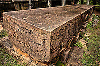 Called a Stone Book, this massive 11th century slab sings praises to King Nissanka Malla.  The writing on the stone is really an ancient piece of royal propaganda.  The stone was dragged over 100 km, before resting here for a millenium. (Photo by Matt Considine - Images of Asia Collection)