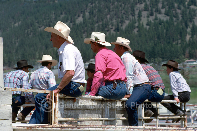 Cowboys sitting on a Fence behind the Chutes and watching a Rodeo
