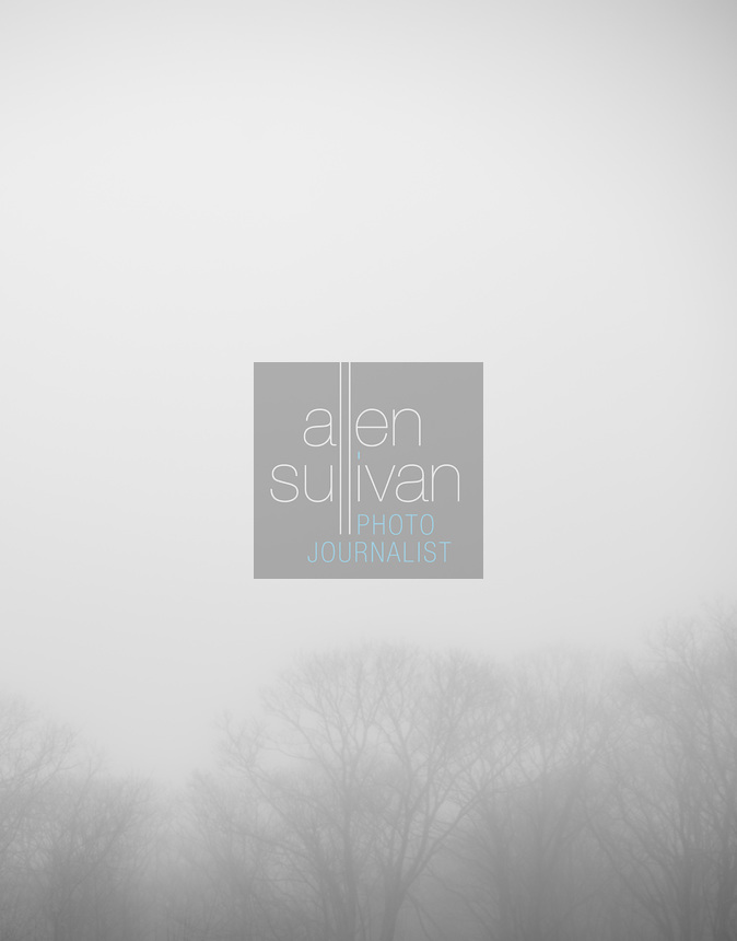 Trees in fog. Highlands, North Carolina, Dec. 25, 2009.