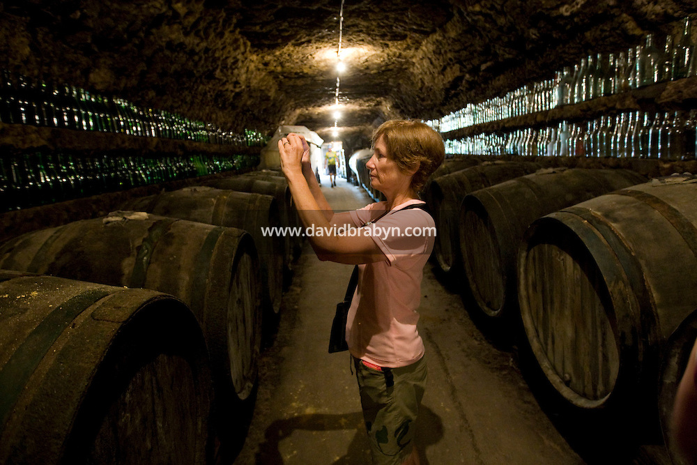 Mary Brodsky, participant in a Backroads cycle tour of the Loire Valley, takes a picture of winemaker Daniel Jarry's collection of bottles in his cellars in Vouvray, France, 26 June 2008.
