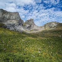 Green summer birch trees below dramatic mountain peaks, Moskenesoy, Lofoten Islands, Norway
