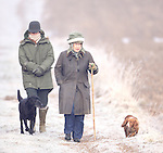 The Queen walking with her dogs on a winters day on the Sandringham estate.