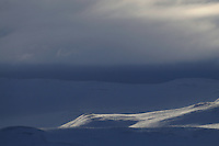 dovrefjell national park , norway, february,.