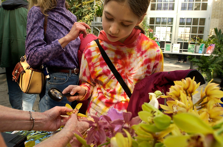 "Sarah Glanister, 12, of Michigan, examines an orchid at the U.S. Botanic Garden where the flowers are being displayed in an ""art  deco"" style inspired by gardens from the 1930s."