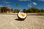 "Broken coconut on the road at  Fayaoue on  the Ouvea island in the Loyalty islands..Ouvéa (local pronunciation: [u?ve.a]) is a commune in the Loyalty Islands Province of New Caledonia, an overseas territory of France in the Pacific Ocean. The settlement of Fayaoué [fa?jawe], on Ouvéa Island, is the administrative centre of the commune of Ouvéa..Ouvéa is made up of Ouvéa Island, the smaller Mouli Island and Faiava Island, and several islets around these three islands. All these lie among the Loyalty Islands, to the northeast of New Caledonia's mainland..Ouvéa Island is one of the Loyalty Islands, in the archipelago of New Caledonia, an overseas territory of France in the Pacific Ocean. The island is part of the commune (municipality) of Ouvéa, in the Islands Province of New Caledonia..The crescent-shaped island, which belongs to a larger atoll, is 50 km (30 miles) long and 7 km (4.5 miles) wide. It lies northeast of Grande Terre, New Caledonia's mainland..Ouvéa is home to around 3,000 people that are organized into tribes divided into Polenesian, Melanesian and Walisian by ethnic descend. The Iaai language is spoken on the island..The two native languages of Ouvéa are the Melanesian Iaai and the Polynesian Faga Uvea, which is the only Polynesian language that has taken root in New Caledonia. Speakers of Faga Uvea have fully integrated into the Kanak society, and consider themselves Kanak..Ouvéa has rich marine resources and is home to many sea turtles, species of fish, coral as well as a native parrot, the Uvea Parakeet, that can only be found on the island of Ouvéa..A large crustacaen called a ""coconut crab"" or crabe de cocotier can also be found on the islands. The large crabs live in palm tree plantations and live solely on a diet of coconuts that they crack open with their powerful claws. They are blue in colour and can grow to several kilos in size. They are a land based species and do not venture into the ocean..Broken coconut on the road at  Fayaoue on  the Ou"