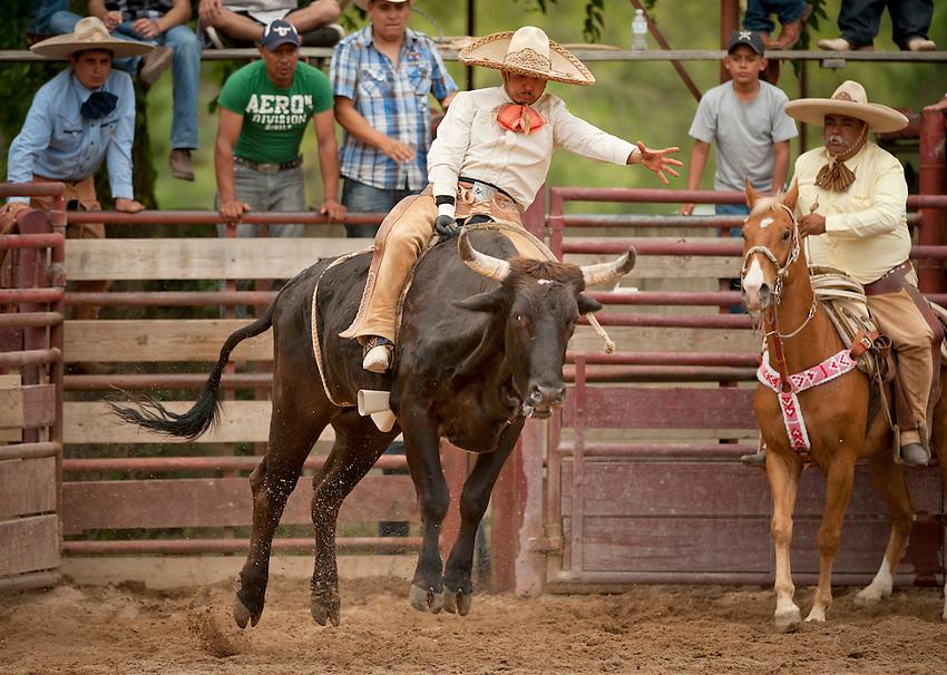 A charro rides a bull during Fiesta Charreada, Sunday, April 29, 2012, at San Antonio Charro Ranch in San Antonio, TX, USA. (Darren Abate/pressphotointl.com)
