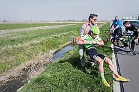 crash for Wouter Wippert (NED/Cannondale-Drapac)<br /> <br /> 79th Gent-Wevelgem 2017 (1.UWT)<br /> 1day race: Deinze &rsaquo; Wevelgem - BEL (249km)