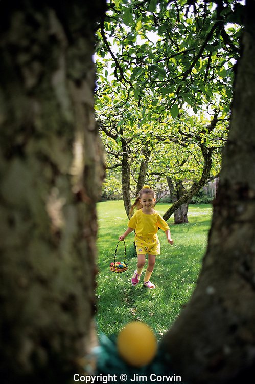 Girl ( 6 yrs old) running, looking for hidden eggs in backyard, with happy face on Easter Sunday, Issaquah, Washington USA    MR