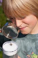 Junge, Kind bastelt eine Becherlupe, Beobachtungsgefäß aus 2 durchsichtigen Plastikbecher, einem Stück Styropor und Frischhaltefolie. Fertiges Beobachtungsgefäß: Gefangenes Tierchen, Spinne befindet sich unverletzt zwischen dem weichen Styropor und der dehnfähigen Frischhaltefolie der ineinander gestülpten beiden Plastikbecher und kann in Ruhe mit einer Lupe betrachtet werden