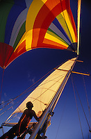 Man trimming spinnaker at sunset aboard sailing yacht 'Heron', a Halberg-Rassy 46, in tropical waters