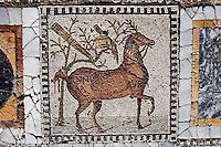 Detail of a mosaic depicting a horse in the peristyle of the Villa of the Aviary Carthage, Tunisia, pictured on January 30, 2008, in the morning. Carthage was founded in 814 BC by the Phoenicians who fought three Punic Wars against the Romans over this immensely important Mediterranean harbour. The Romans finally conquered the city in 146 BC. Subsequently it was conquered by the Vandals and the Byzantine Empire. Today the site is a UNESCO World Heritage. The Roman Villa of the Aviary, with its octagonal garden set in a peristyle courtyard, is known for its fine mosaics depicting birds. Picture by Manuel Cohen.