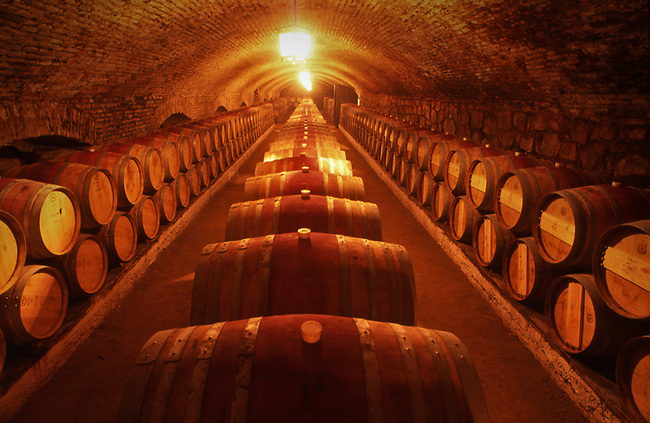 Barrels at Chappellet winery in Chile