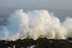 Huge wave crashing against the shoreline, Tsitsikamma Marine Protected Area, Garden Route National Park, Eastern Cape, South Africa,