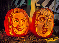 Just in time for Halloween and the Presidential election pumpkins decorated with carvings of the faces of Hillary Clinton, left,  and Donald Trump are on display at Chelsea Market on Friday, October 28, 2016. Rubie's, the world's largest costume maker, reports that Trump masks are outselling Clinton.  (© Richard B. Levine)