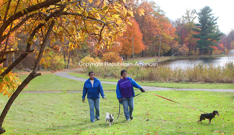 WATERBURY- OCTOBER 29 2014 102914DA02- Sisters, Cynthia Ellis, left, and Lorine Ellis both of Waterbury enjoyed the mild weather and beautiful foliage as they took a walk Lorine's dogs Brooklyn and Justice through Fulton Park in Waterbury on Wednesday.<br /> Darlene Douty Republican American