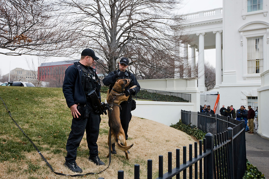 Members of the Counter Assault Division of the Secret Service with a security guard dog on the north lawn of the White House in Washington.  ..Photo by Brooks Kraft/Corbis.........................
