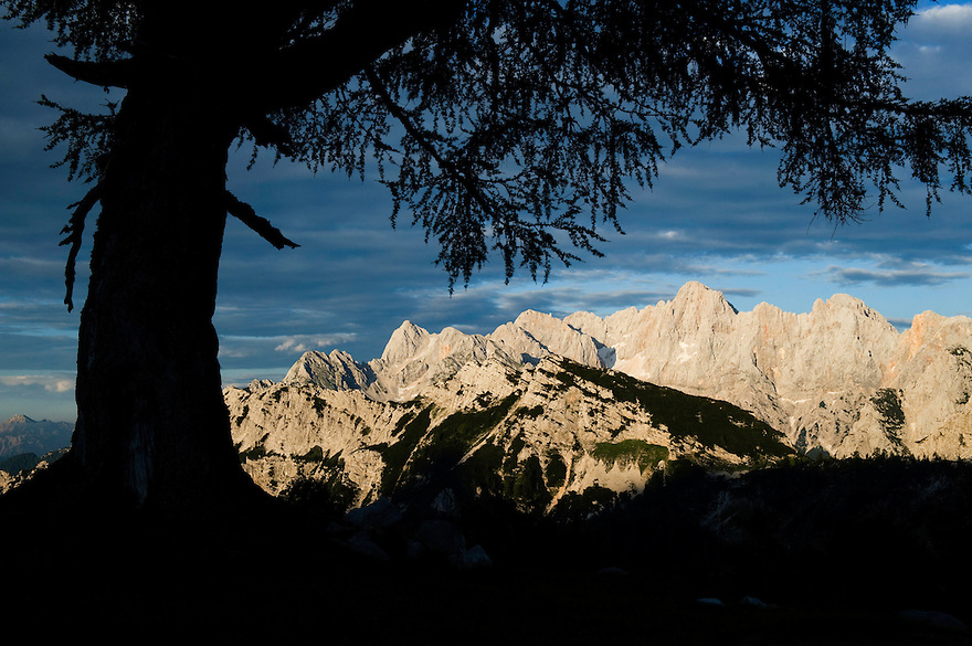 Mount Spik and Mount Prisojnik, view from &quot;Sleme&quot;<br /> Julian Alps<br /> Triglav National Park, Slovenia<br /> July 2009