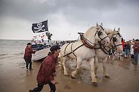 France, Pas-de-Calais (62), Côte d'Opale, Wissant, chevaux boulonnais tirant un flobart dans la mer avec le Cap Blanc-Nez en arrière plan -  Fête des Flobarts, bateau de pêche traditionnel // France, Pas de Calais, Cote d'Opale, Wissant, Boulonnais horses pulling a flobart in the sea with the Cape Blanc-Nez in the background - Day flobarts, traditional fishing boat