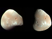 Pasadena, CA - March 9, 2009 -- These color-enhanced views of Deimos, the smaller of the two moons of Mars, were taken on February 21, 2009, by the High Resolution Imaging Science Experiment (HiRISE) camera on NASA's Mars Reconnaissance Orbiter. Deimos is about 7.5 miles in diameter.  Deimos has a smooth surface due to a blanket of fragmental rock or regolith, except for the most recent impact craters. It is a dark, reddish object, very similar to Mars' other moon, Phobos.  These Deimos images combine HiRISE exposures in near-infrared, red and blue-green wavelengths. In the enhanced color, subtle color variations are visible -- redder in the smoothest areas and less red near the fresh impact craters and over ridges of topographic highs. The color variations are probably caused by exposure of surface material to the space environment, which leads to darkening and reddening. Brighter and less-red surface materials have seen less exposure to space due to recent impacts or downslope movement of regolith..Credit: NASA/JPL-Caltech/University of Arizona via CNP