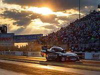 Sep 16, 2016; Concord, NC, USA; NHRA funny car driver Matt Hagan during qualifying for the Carolina Nationals at zMax Dragway. Mandatory Credit: Mark J. Rebilas-USA TODAY Sports