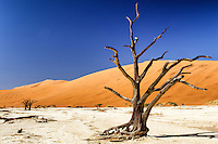 Namibia - Sossusvlei and Namib Desert