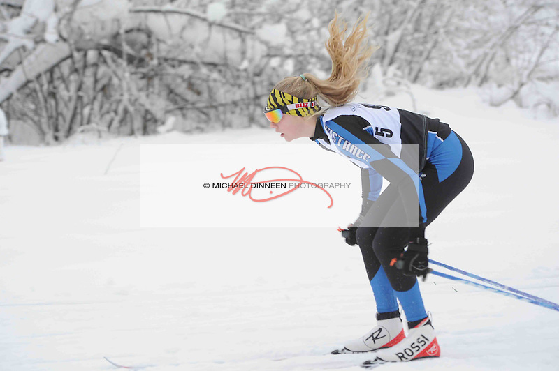 Chugiak's Adrianna Proffitt poles along at the start of her race in  the Chugiak Stampede Saturday, January 14, 2017.  Photo for the Star by Michael Dinneen