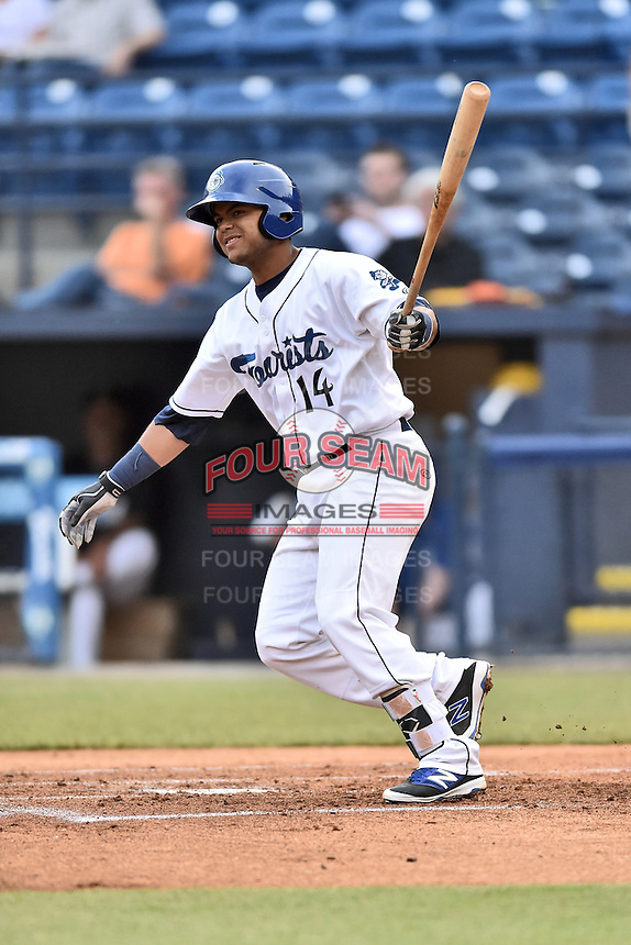 Asheville Tourists catcher Hamlet Marte (14) swings at a pitch during a game against the Hagerstown Suns at McCormick Field on April 27, 2016 in Asheville, North Carolina. The Tourists defeated the Suns 14-7. (Tony Farlow/Four Seam Images)