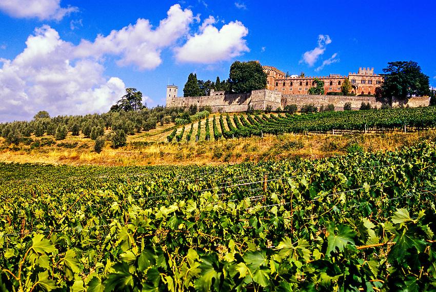 Castello di Brolio, Chianti, Tuscany, Italy