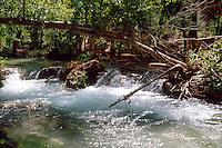 WATERFALLS<br /> Havasu Creek - Rapids<br /> Supai Indian Reservation, AZ